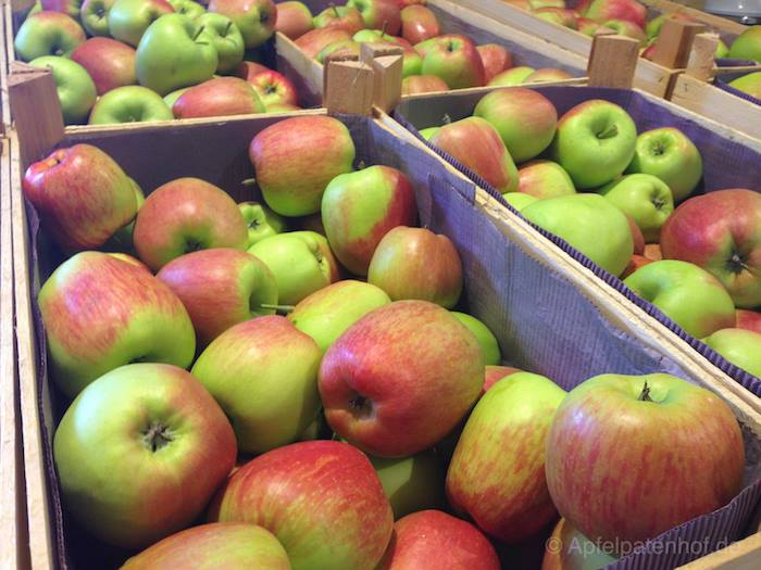 wir ernten heute äpfel